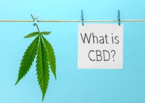what is CBD good for?